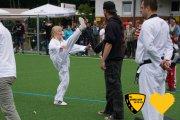 20170617_sww_taekwondo_239