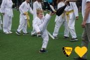 20170617_sww_taekwondo_194