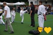 20170617_sww_taekwondo_249