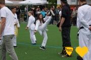 20170617_sww_taekwondo_257