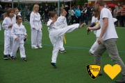20170617_sww_taekwondo_89
